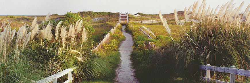 Sunset Beach Path