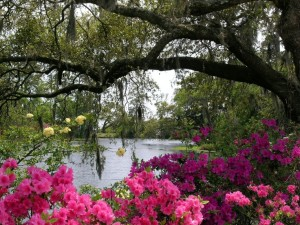 Airlie Gardens Vacation Activity Guide