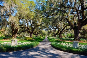 Brookgreen Gardens Vacation Activity Guide
